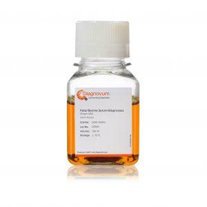 Fetal Bovine Serum Bioprocess