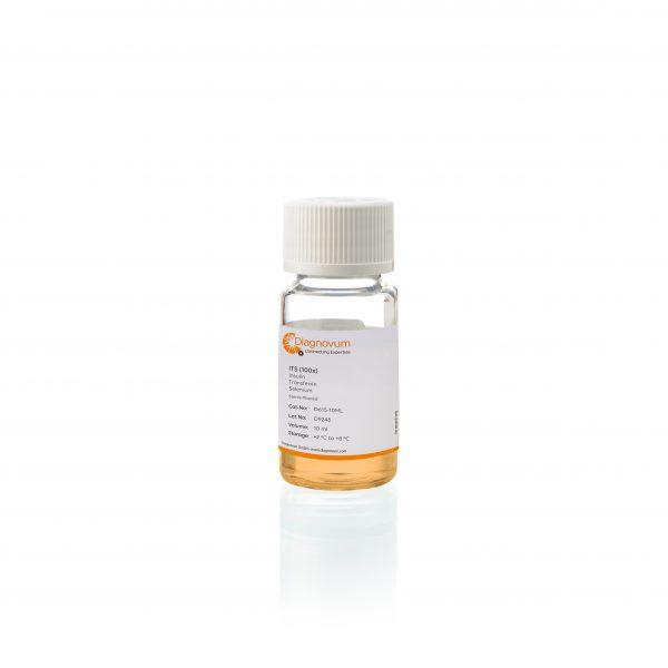 ITS (100x), Insulin, Transferrin, Selenium